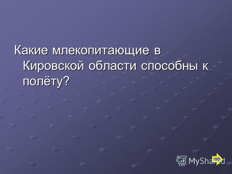 Какие млекопитающие в Кировской области способны к полёту?
