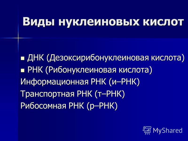 Виды нуклеиновых кислот ДНК (Дезоксирибонуклеиновая кислота) ДНК (Дезоксирибонуклеиновая кислота) РНК (Рибонуклеиновая кислота) РНК (Рибонуклеиновая кислота) Информационная РНК (и–РНК) Транспортная РНК (т–РНК) Рибосомная РНК (р–РНК)
