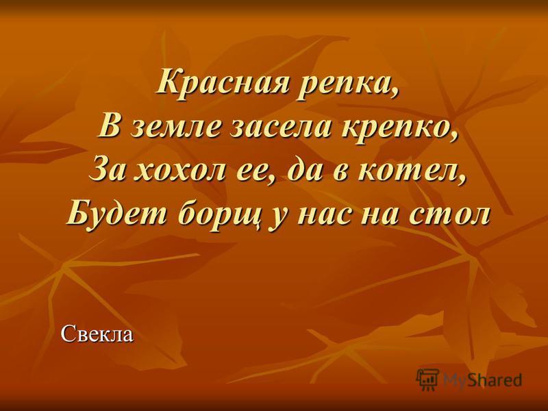 Красная репка, В земле засела крепко, За хохол ее, да в котел, Будет борщ у нас на стол Свекла
