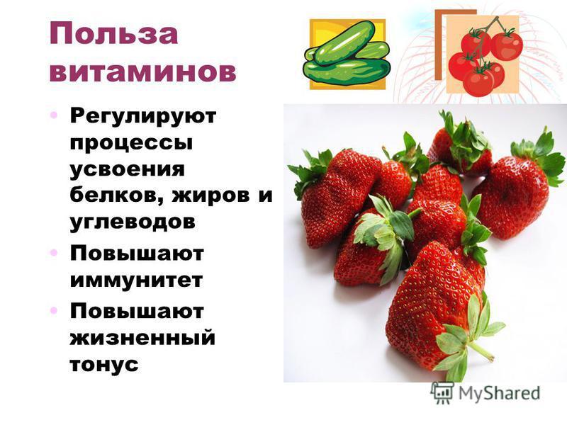 Польза витаминов Регулируют процессы усвоения белков, жиров и углеводов Повышают иммунитет Повышают жизненный тонус