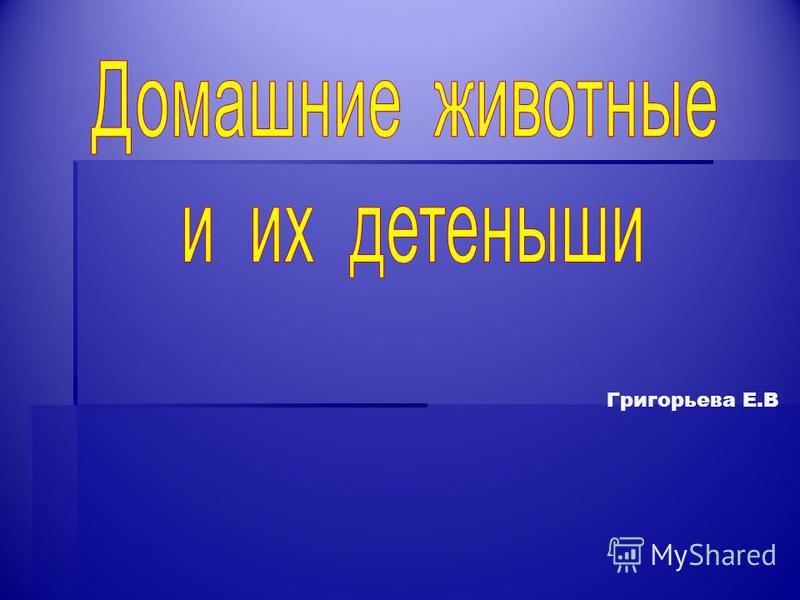 Григорьева Е.В