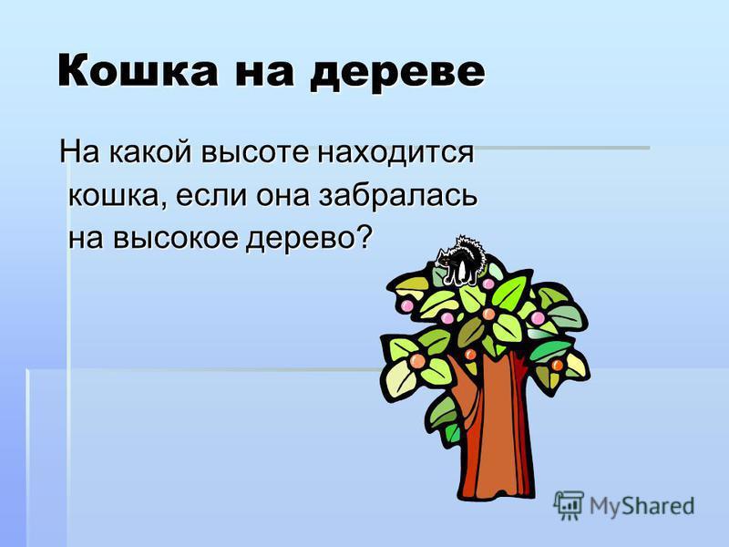Кошка на дереве Кошка на дереве На какой высоте находится кошка, если она забралась кошка, если она забралась на высокое дерево? на высокое дерево?