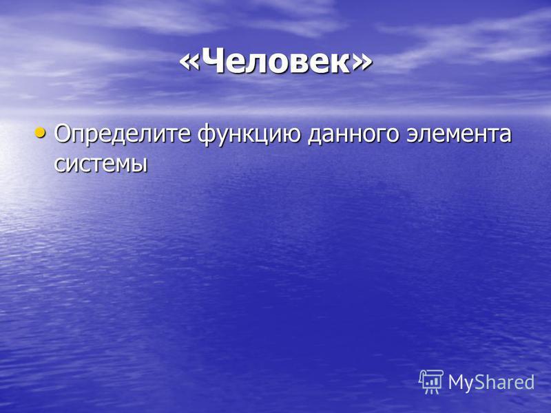 «Человек» Определите функцию данного элемента системы Определите функцию данного элемента системы