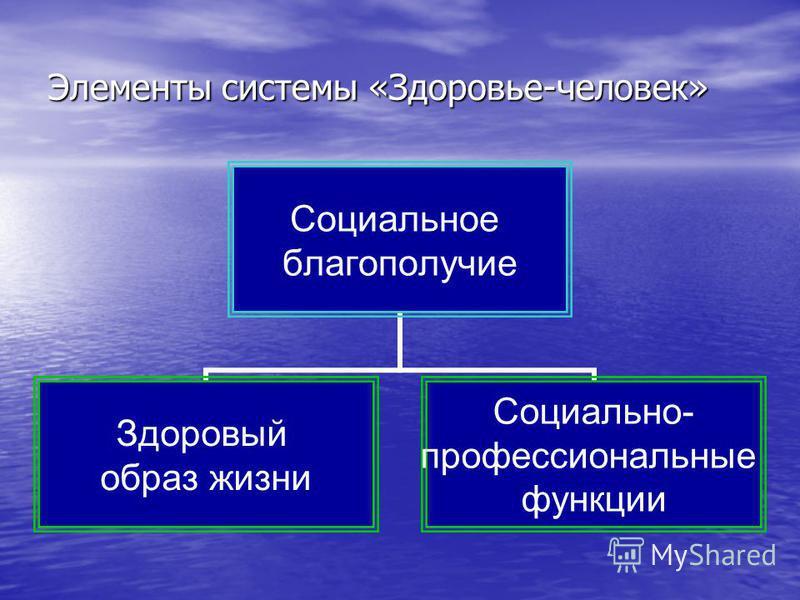 Элементы системы «Здоровье-человек» Социальное благополучие Здоровый образ жизни Социально- профессиональные функции