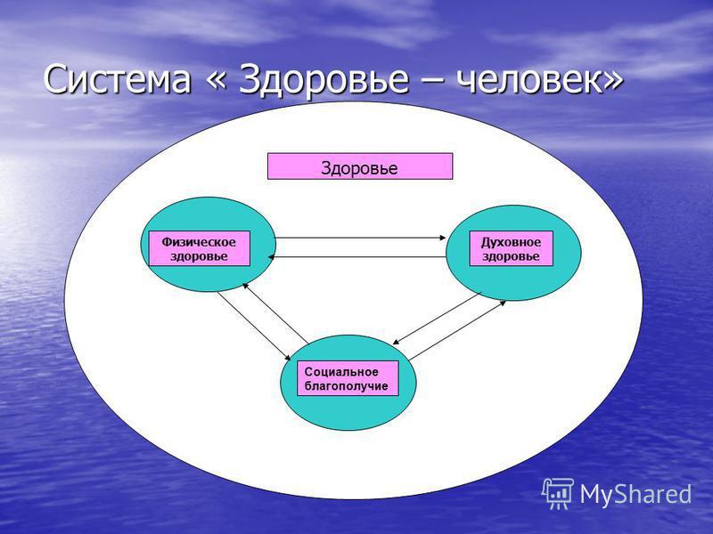 Система « Здоровье – человек» Физическое здоровье Духовное здоровье Социальное благополучие Здоровье
