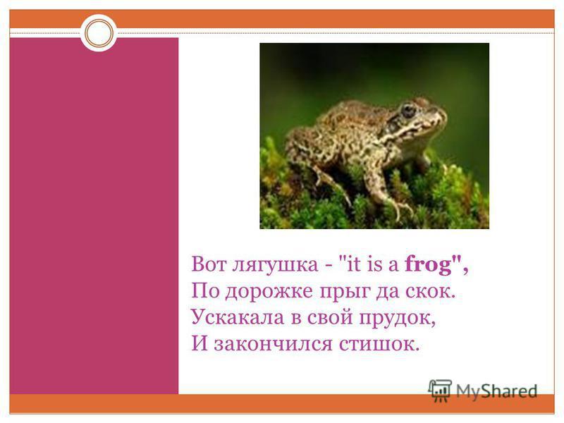 Вот лягушка - it is a frog, По дорожке прыг да скок. Ускакала в свой прудок, И закончился стишок.