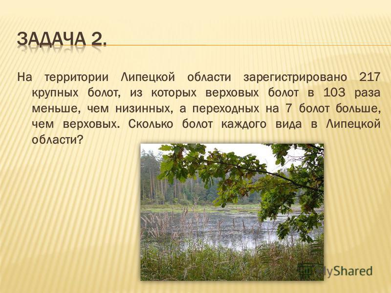 На территории Липецкой области зарегистрировано 217 крупных болот, из которых верховых болот в 103 раза меньше, чем низинных, а переходных на 7 болот больше, чем верховых. Сколько болот каждого вида в Липецкой области?