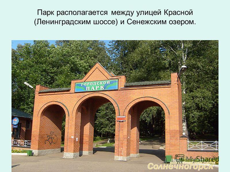 Парк располагается между улицей Красной (Ленинградским шоссе) и Сенежским озером.