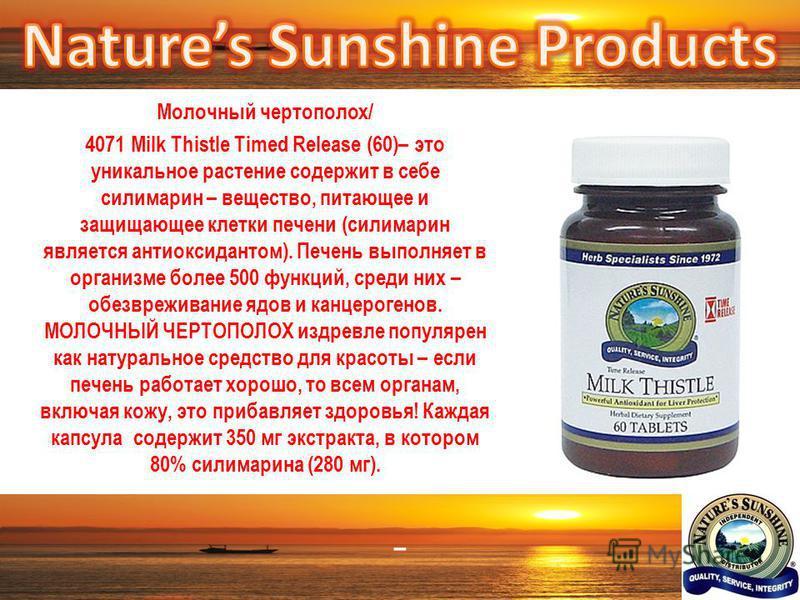 – Молочный чертополох/ 4071 Milk Thistle Timed Release (60)– это уникальное растение содержит в себе силимарин – вещество, питающее и защищающее клетки печени (силимарин является антиоксидантом). Печень выполняет в организме более 500 функций, среди