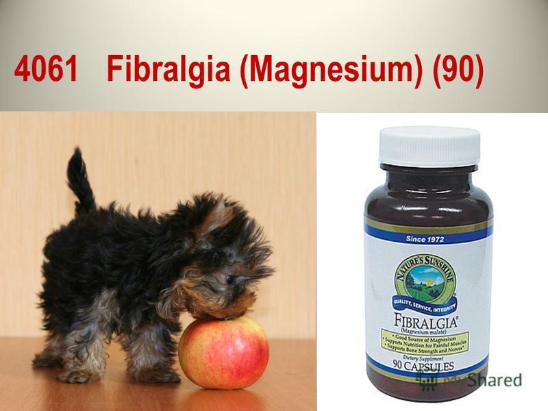 4061 Fibralgia (Magnesium) (90)