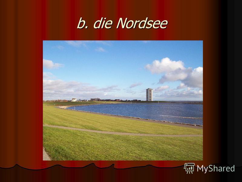 b. die Nordsee