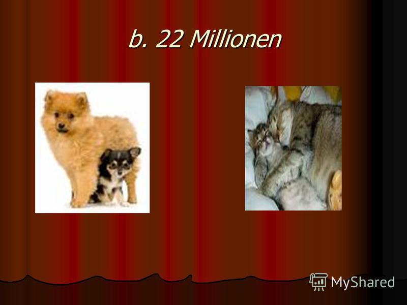 b. 22 Millionen