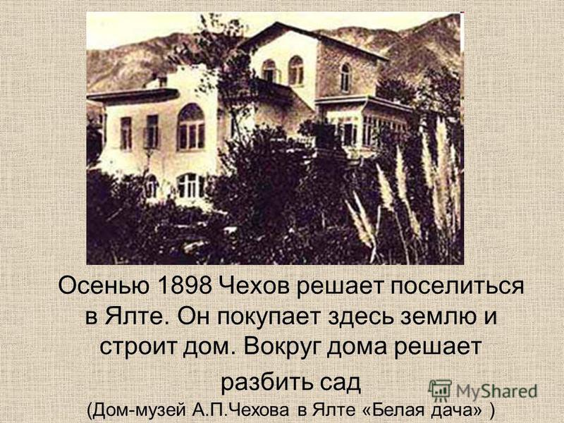 Осенью 1898 Чехов решает поселиться в Ялте. Он покупает здесь землю и строит дом. Вокруг дома решает разбить сад (Дом-музей А.П.Чехова в Ялте «Белая дача» )