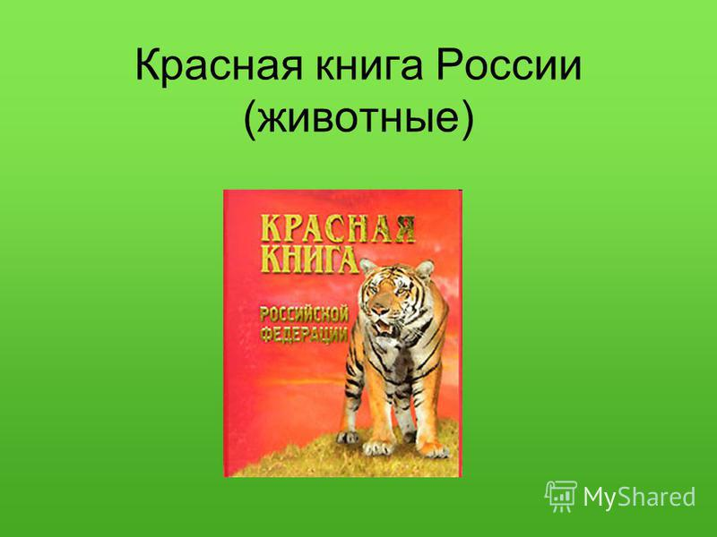 Красная книга России (животные)
