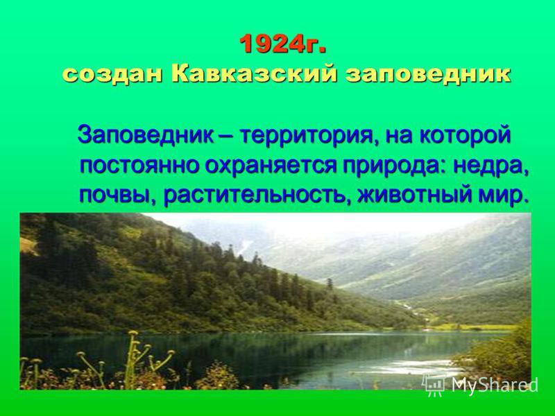 1924 г. создан Кавказский заповедник Заповедник – территория, на которой постоянно охраняется природа: недра, почвы, растительность, животный мир.