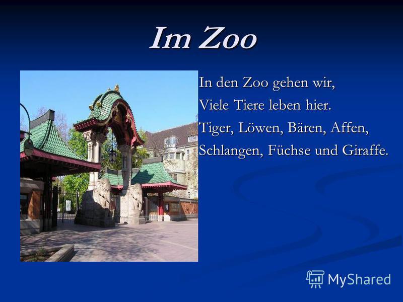 Im Zoo In den Zoo gehen wir, Viele Tiere leben hier. Tiger, Löwen, Bären, Affen, Schlangen, Füchse und Giraffe.