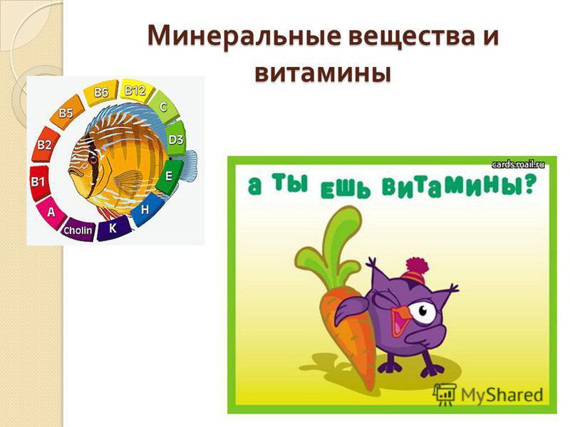 Минеральные вещества и витамины