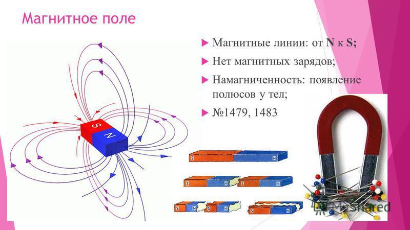 Магнитное поле Магнитные линии: от N к S; Нет магнитных зарядов; Намагниченность: появление полюсов у тел; 1479, 1483