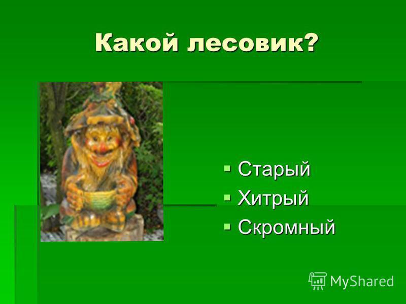 Какой лесовик? старый старый Старый Старый Хитрый Хитрый Скромный Скромный