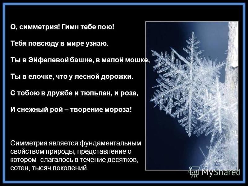 О, симметрия! Гимн тебе пою! Тебя повсюду в мире узнаю. Ты в Эйфелевой башне, в малой мошке, Ты в елочке, что у лесной дорожки. С тобою в дружбе и тюльпан, и роза, И снежный рой – творение мороза! Симметрия является фундаментальным свойством природы,