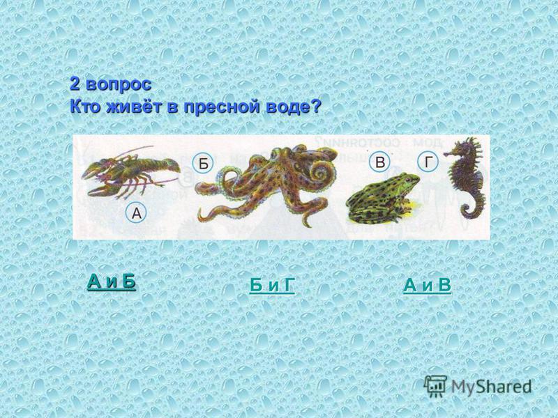 2 вопрос Кто живёт в пресной воде? А и Б А и Б и Г Б и Г А и В А и В