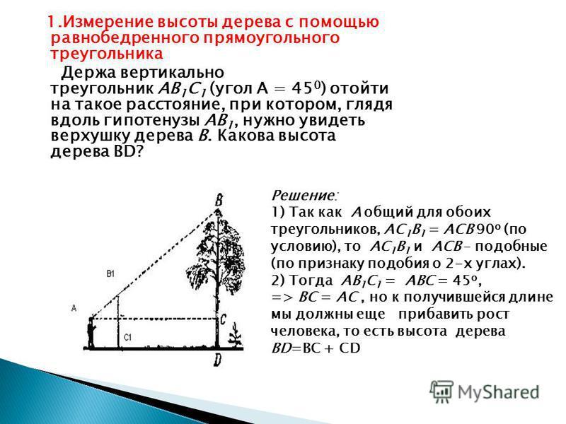 1. Измерение высоты дерева с помощью равнобедренного прямоугольного треугольника Держа вертикально треугольник АВ 1 C 1 (угол А = 45 0 ) отойти на такое расстояние, при котором, глядя вдоль гипотенузы АВ 1, нужно увидеть верхушку дерева В. Какова выс