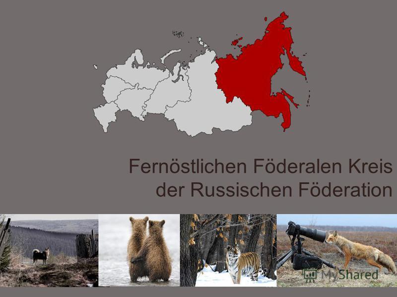 Fernöstlichen Föderalen Kreis der Russischen Föderation