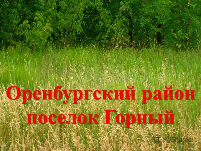 Оренбургский район поселок Горный