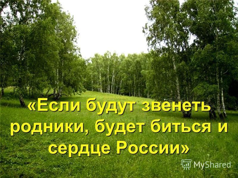 «Если будут звенеть родники, будет биться и сердце России»
