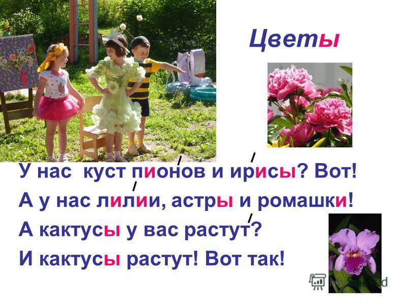 Цветы У нас куст пионов и ирисы? Вот! А у нас лилии, астры и ромашки! А кактусы у вас растут? И кактусы растут! Вот так!