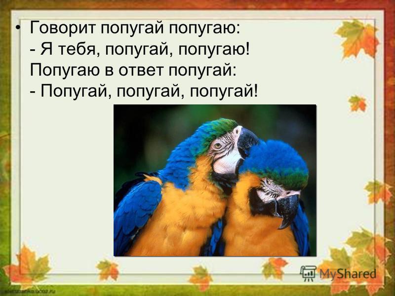 Говорит попугай попугаю: - Я тебя, попугай, попугаю! Попугаю в ответ попугай: - Попугай, попугай, попугай!