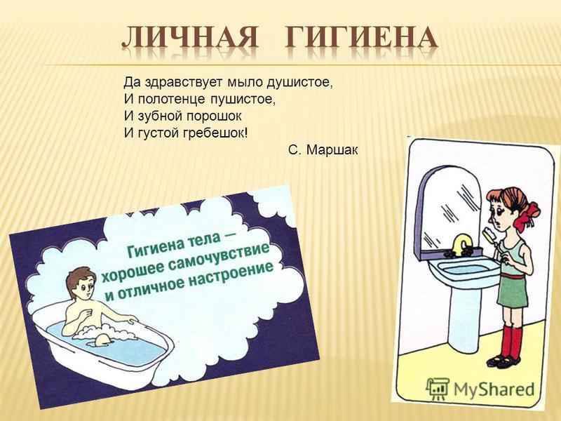 Да здравствует мыло душистое, И полотенце пушистое, И зубной порошок И густой гребешок! С. Маршак