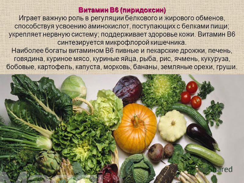 Витамин В6 (пиридоксин) Витамин В6 (пиридоксин) Играет важную роль в регуляции белкового и жирового обменов, способствуя усвоению аминокислот, поступающих с белками пищи; укрепляет нервную систему; поддерживает здоровье кожи. Витамин В6 синтезируется