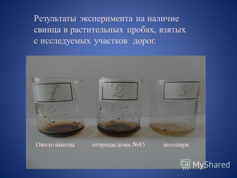 Результаты эксперимента на наличие свинца в растительных пробах, взятых с исследуемых участков дорог. Около школы огороды дома 45 лесопарк