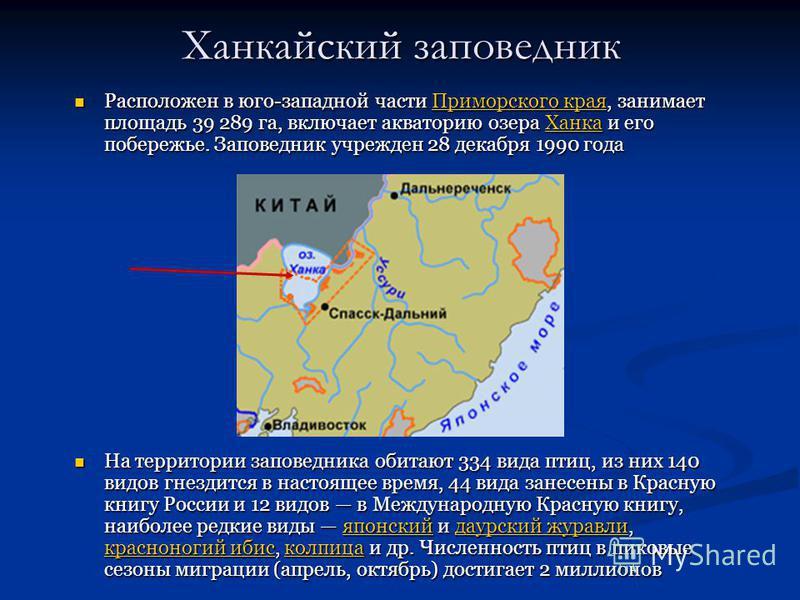 Ханкайский заповедник Расположен в юго-западной части Приморского края, занимает площадь 39 289 га, включает акваторию озера Ханка и его побережье. Заповедник учрежден 28 декабря 1990 года Расположен в юго-западной части Приморского края, занимает пл