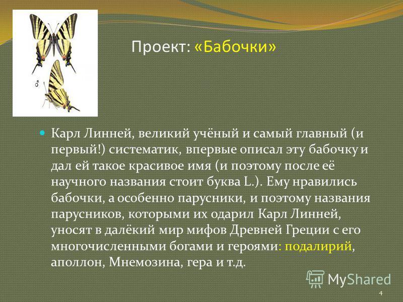 Проект: «Бабочки» 4 Карл Линней, великий учёный и самый главный (и первый!) систематик, впервые описал эту бабочку и дал ей такое красивое имя (и поэтому после её научного названия стоит буква L.). Ему нравились бабочки, а особенно парусники, и поэто