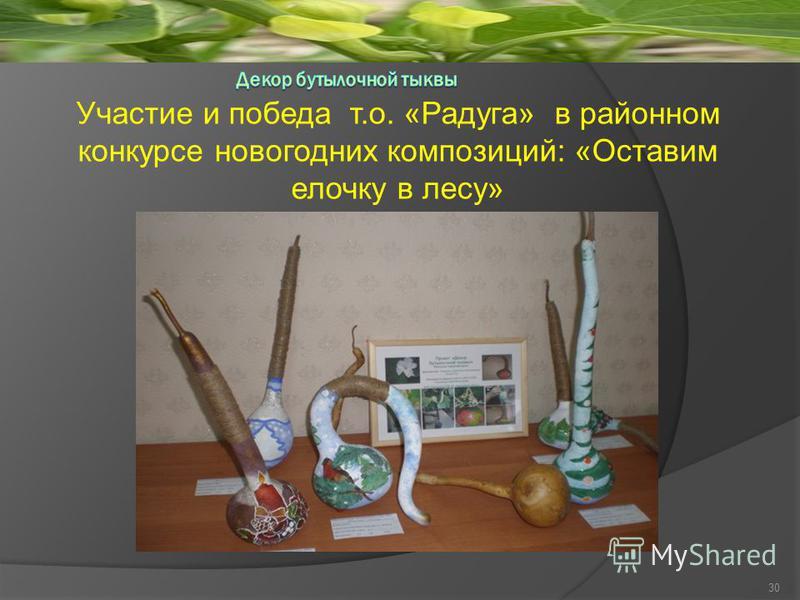 Участие и победа т.о. «Радуга» в районном конкурсе новогодних композиций: «Оставим елочку в лесу» 30