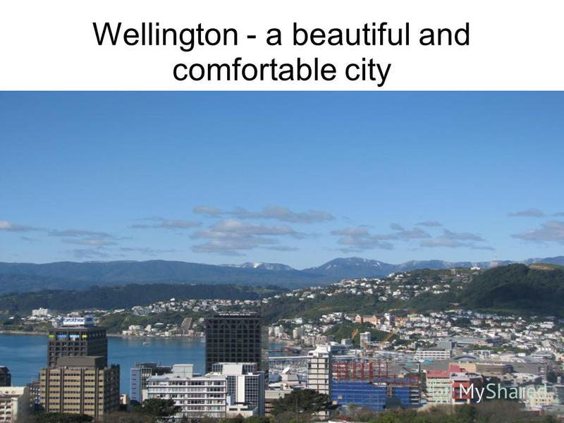 Wellington - a beautiful and comfortable city
