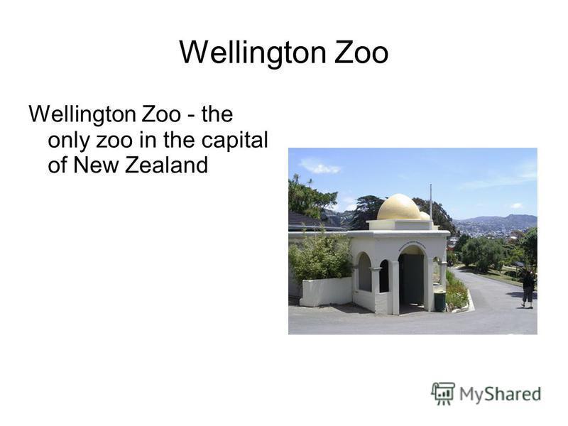 Wellington Zoo Wellington Zoo - the only zoo in the capital of New Zealand