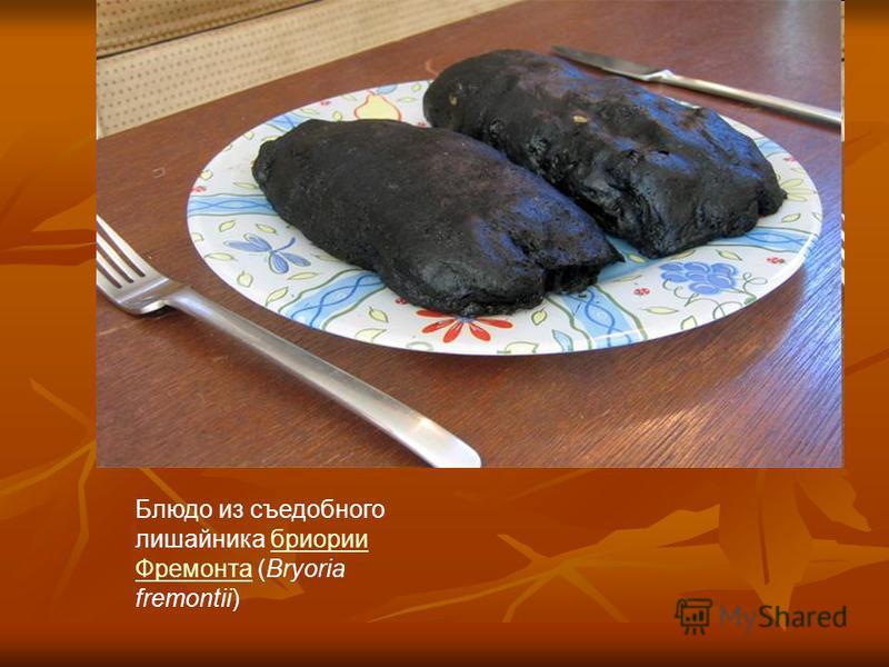 Блюдо из съедобного лишайника брионии Фремонта (Bryoria fremontii)брионии Фремонта