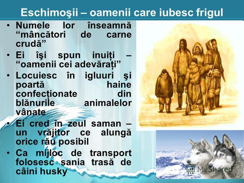 Eschimoşii – oamenii care iubesc frigul Numele lor înseamnă mâncători de carne crudă Ei îşi spun inuiţi – oamenii cei adevăraţi Locuiesc în igluuri şi poartă haine confecţionate din blănurile animalelor vânate Ei cred în zeul saman – un vrăjitor ce a