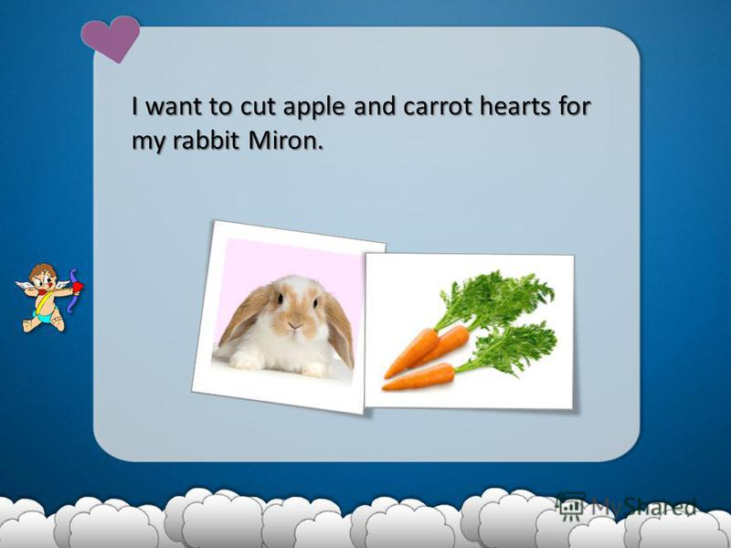 I want to cut apple and carrot hearts for my rabbit Miron.