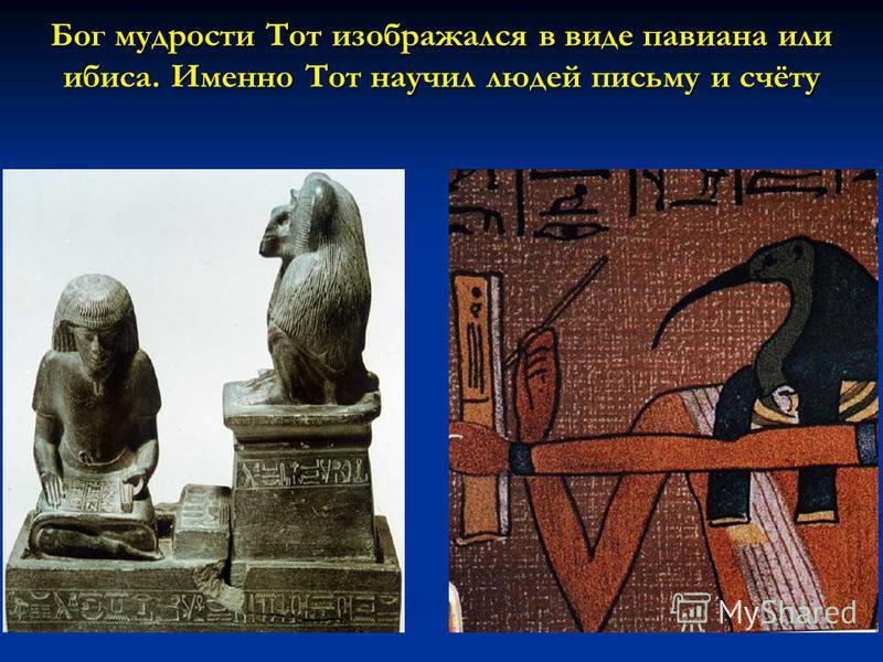 Бог мудрости Тот изображался в виде павиана или ибиса. Именно Тот научил людей письму и счёту