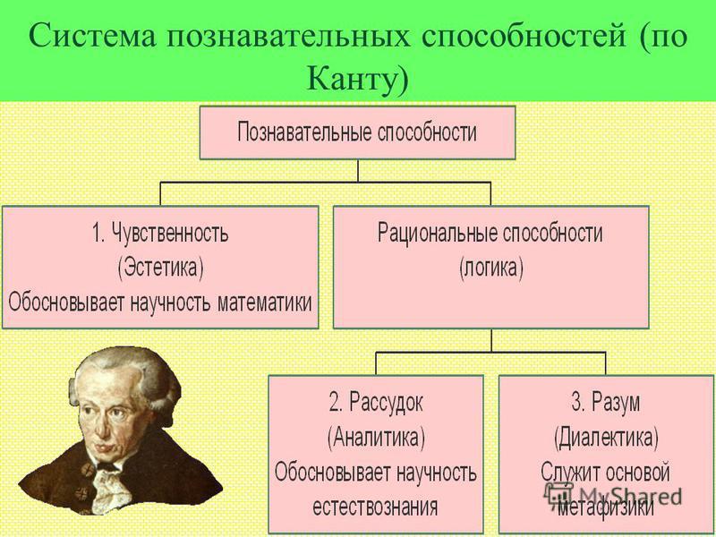 Система познавательных способностей (по Канту)