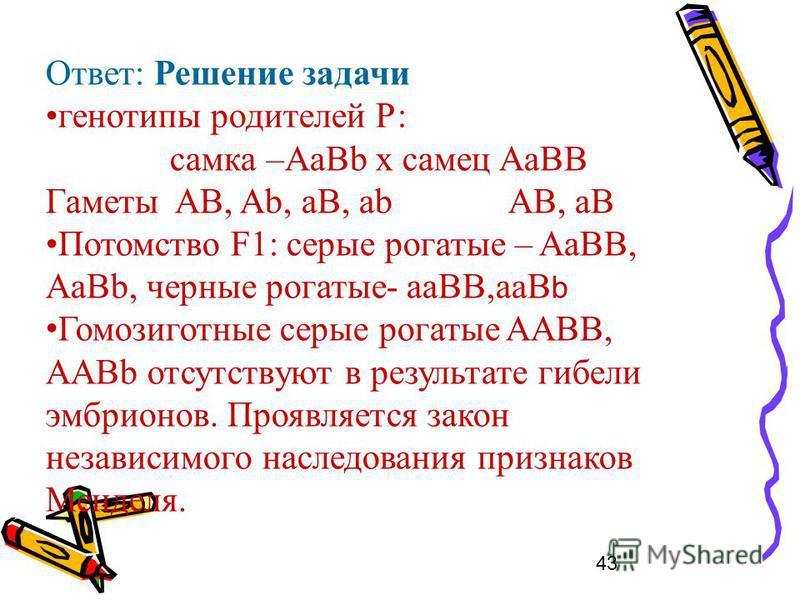 43 Ответ: Решение задачи генотипы родителей Р: самка –АaBb х самец AaBВ Гаметы AB, Ab, aB, ab АВ, аВ Потомство F1: серые рогатые – AaBB, AaBb, черные рогатые- aaВВ,ааВ b Гомозиготные серые рогатые AАBB, ААВb отсутствуют в результате гибели эмбрионов.