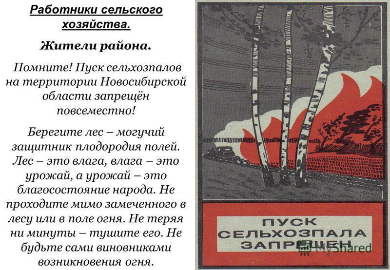 Работники сельского хозяйства. Жители района. Помните! Пуск сельхозпалов на территории Новосибирской области запрещён повсеместно! Берегите лес – могучий защитник плодородия полей. Лес – это влага, влага – это урожай, а урожай – это благосостояние на