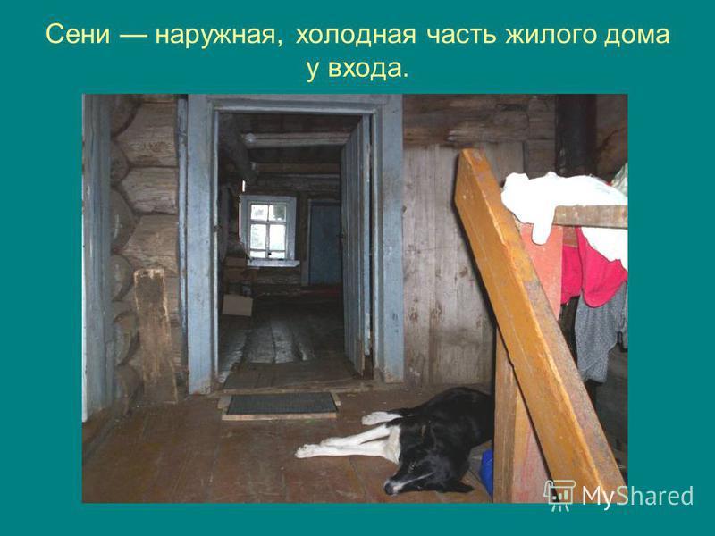 Сени наружная, холодная часть жилого дома у входа.
