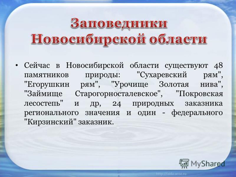 Сейчас в Новосибирской области существуют 48 памятников природы:
