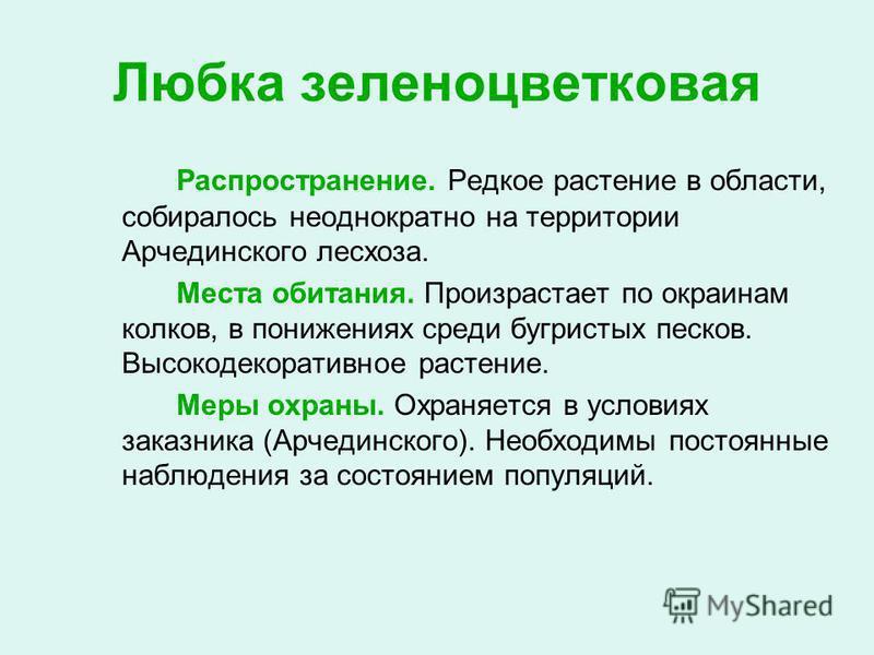 любка зеленоцветковая