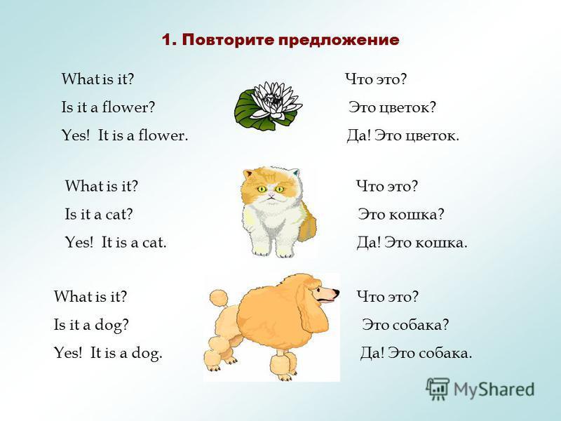 LESSON 2 SIMPLE QUESTION \ ПРОСТЫЕ ВОПРОСЫ